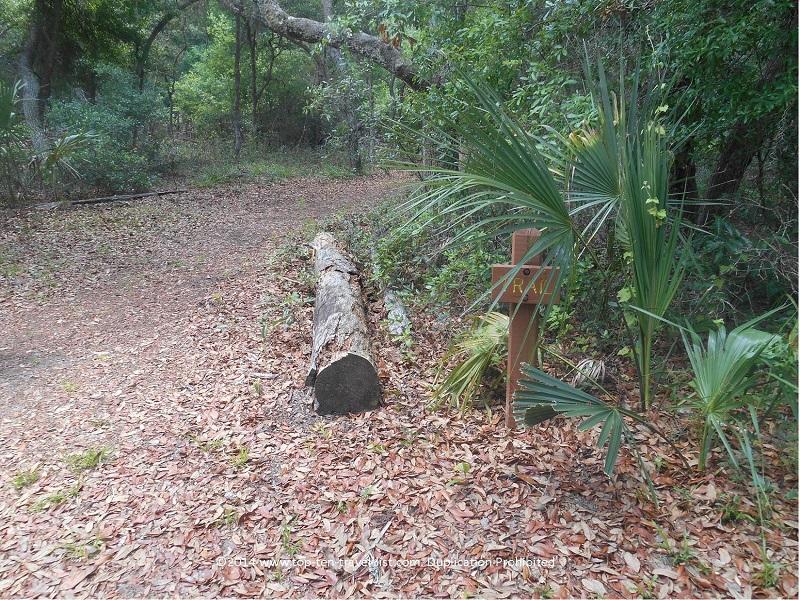 Trail sign at Jay B. Starkey Wilderness Park - New Port Richey, FL