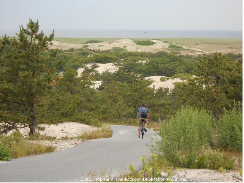 Cape Cod's Provincelands Bike Path