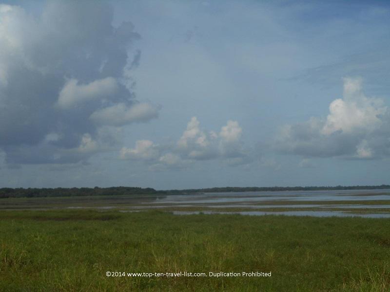 Birdwalk at Myakka River State Park in Sarasota, Florida