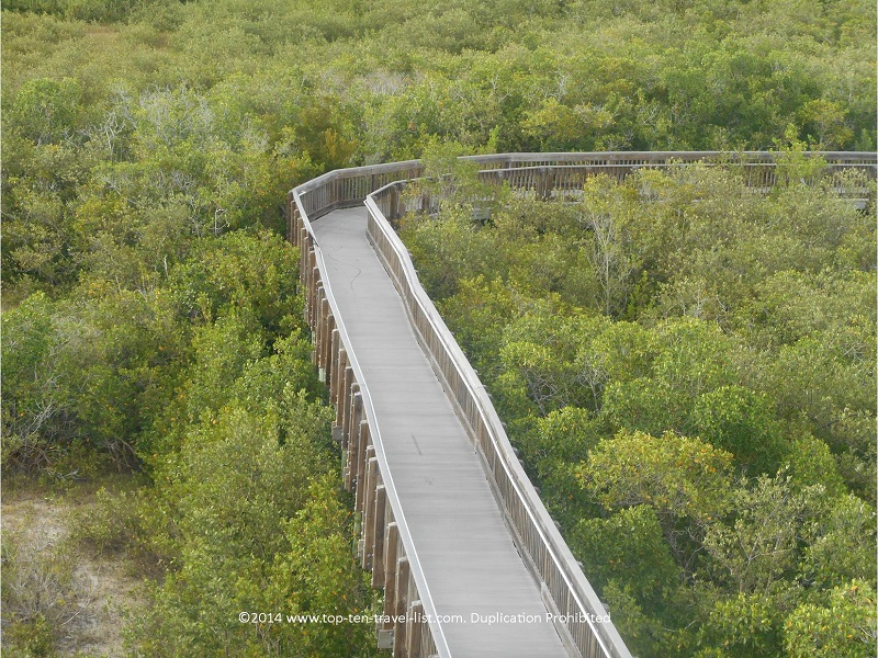 Boardwalk to the observation tower at Weedon Island Preserve in St. Petersburg