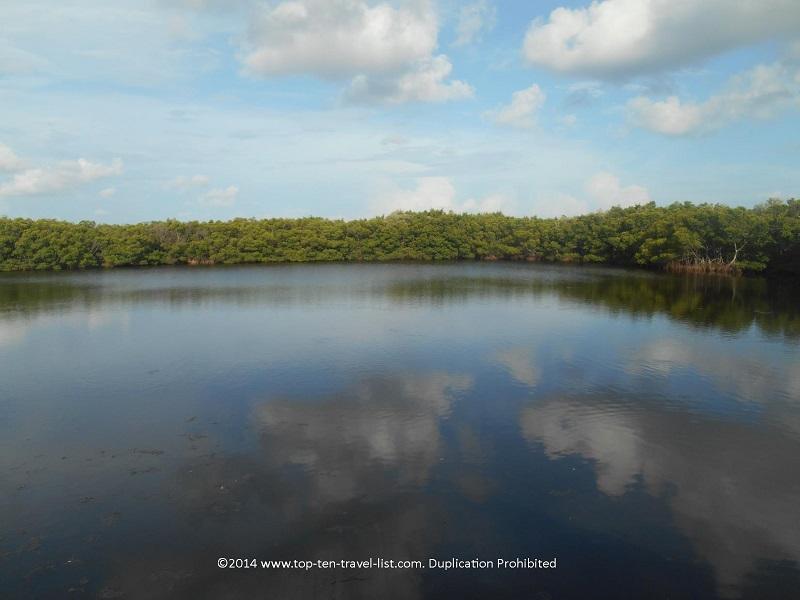 Beautiful views from the boardwalk at Weedon Island Preserve - St. Petersburg, Florida