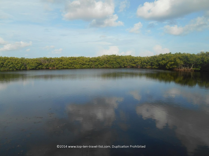 Pond views at Weedon Island Preserve - St. Petersburg, Florida