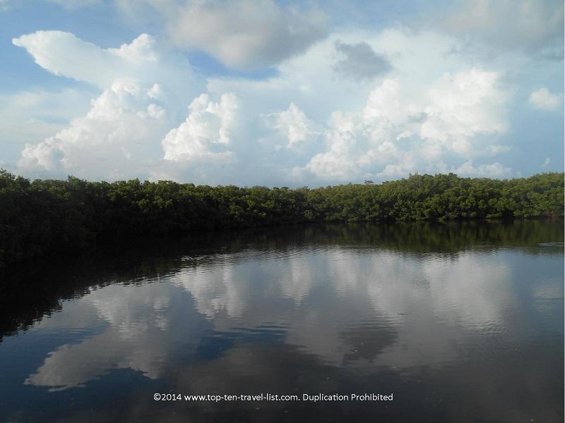 Pretty pond views at Weedon Island Preserve in St. Petersburg, Florida