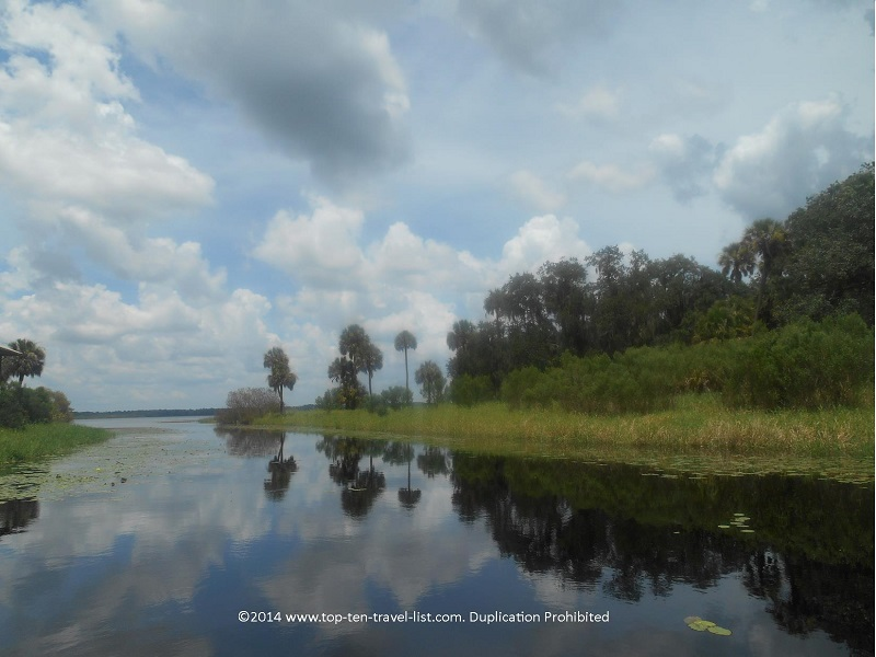 Pretty views along the Gator Gal airboat ride at Myakka River State park