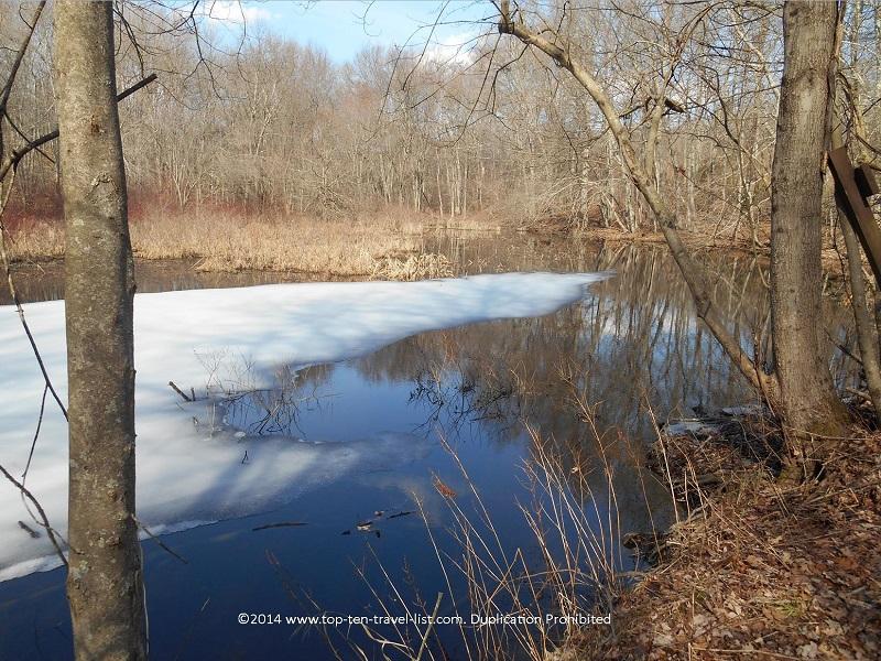 Icy stream at Caratunk Wildlife Refuge in Seekonk, Massachusetts