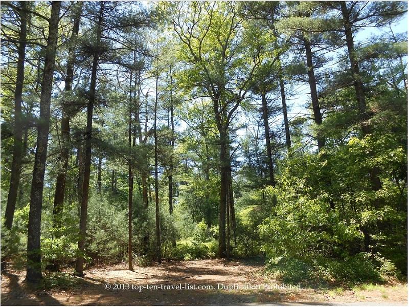 Massasoit State Park in East Taunton, Massachusetts