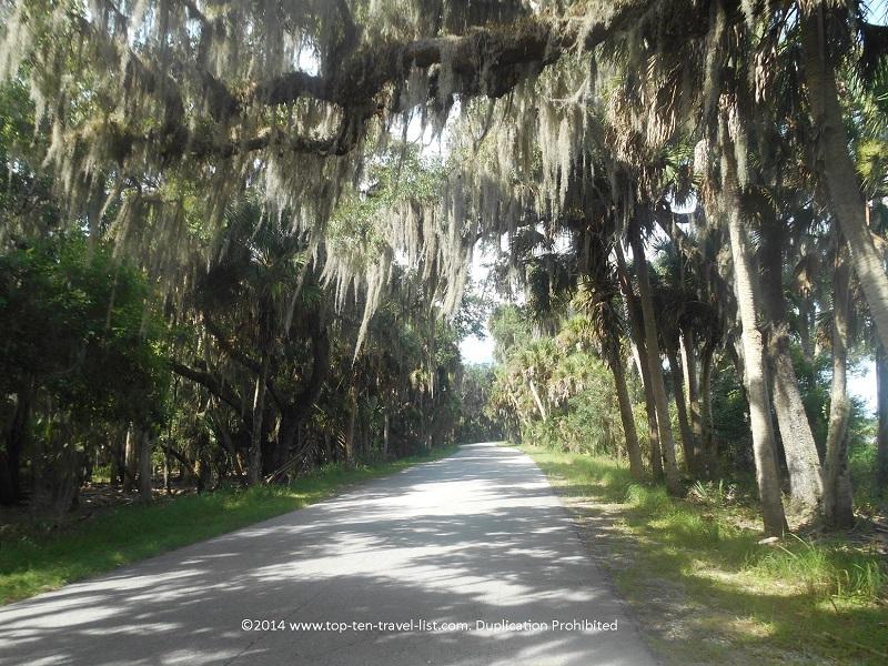 Shaded views along the 7 mile scenic path at Myakka River State Park - Sarasota, Florida