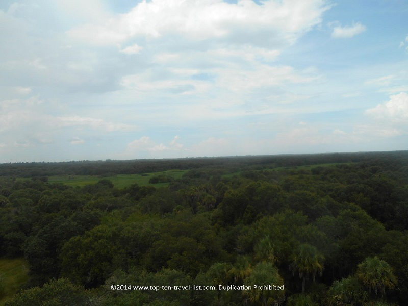 Views from Myakka River State Park observation tower