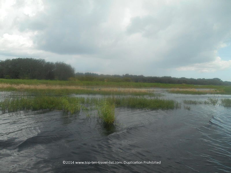 Pretty views of the Upper Myakka Lake on a cloudy day - taken from the Gator Gal airboat ride