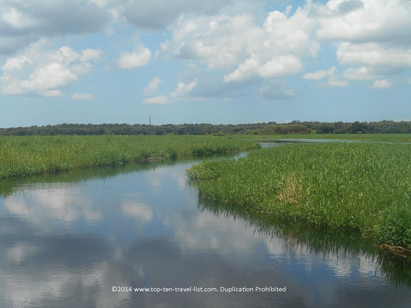 Beautiful views at Myakka River State Park - near Sarasota, Florida