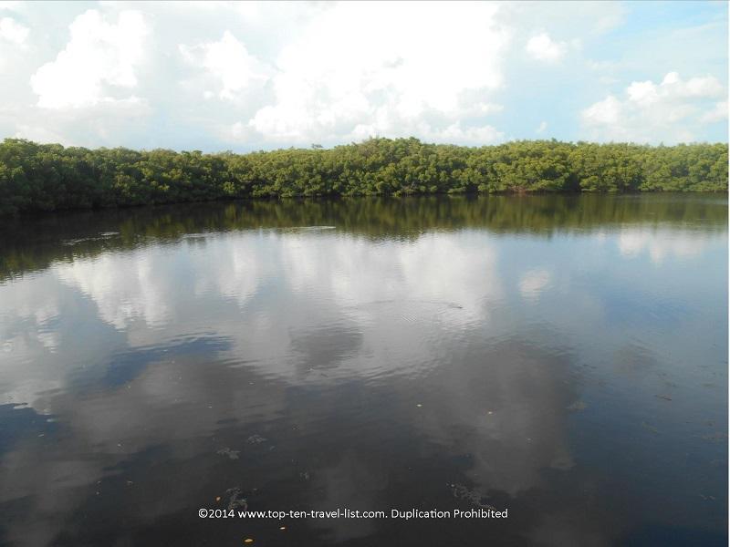 Beautiful pond views at Weedon Island Preserve - St. Petersburg, Florida