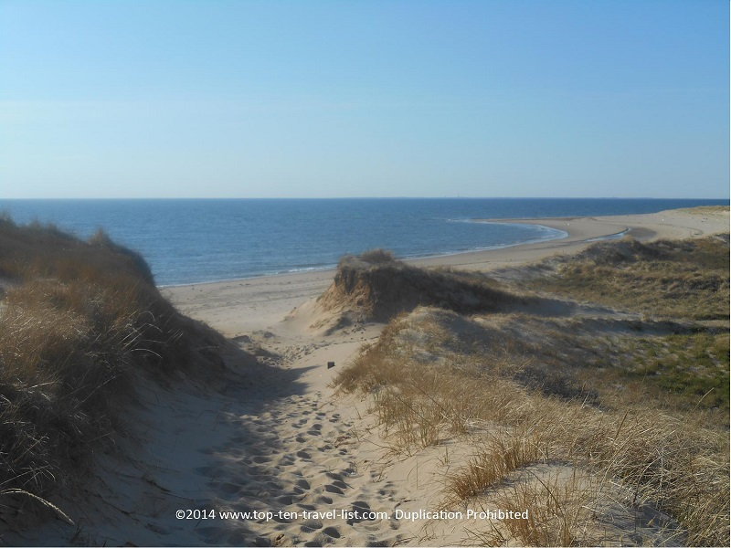 View of the ocean from Cape Cod's Great Island Trail
