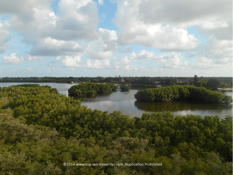 Views from the observation tower at Weedon Island Preserve in St. Petersburg, Florida