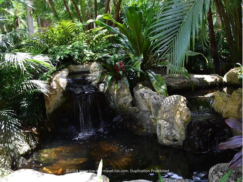 Pretty waterfall at Sunken Gardens in St. Petersburg, Florida