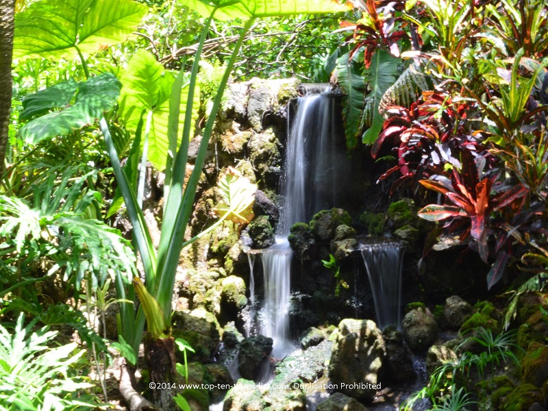 Waterfall at Sunken Gardens in St. Petersburg, Florida