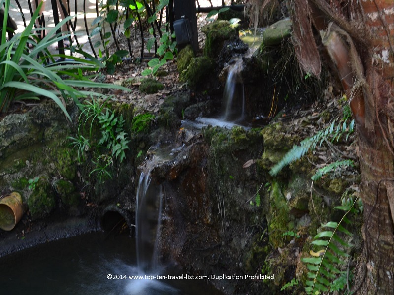 One of the many waterfalls at Sunken Gardens in St. Petersburg, Florida