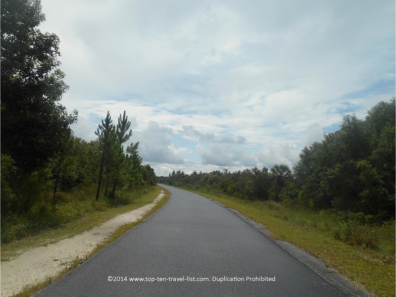 Gorgeous views of the forests on the Flatwoods Loop at Tampa's Flatwoods park