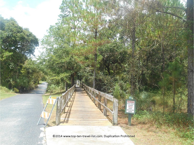 The boarwalk at Flatwoods Park in Tampa, Florida
