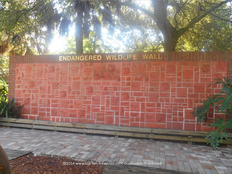 Endangered Wildlife Wall at Tampa's Lowry Park Zoo