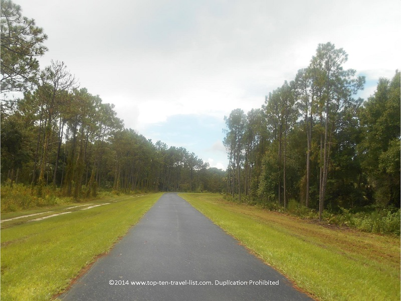 The beautiful 7 mile loop at Flatwoods park in Tampa, Florida
