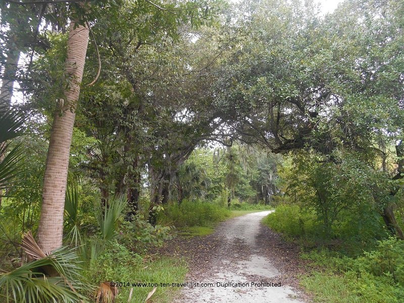 Main Trail loop at Boyd Hill Nature Preserve in St. Petersburg, Florida