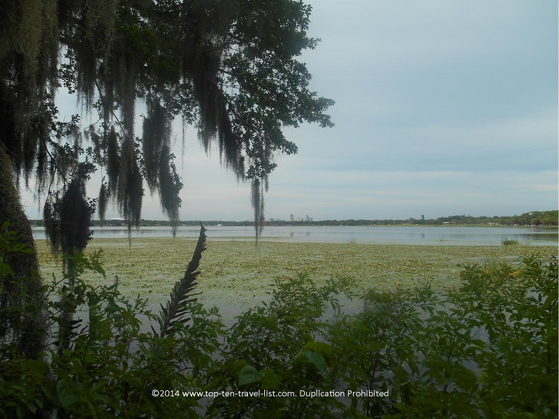 Pretty marsh views along the Uplands Trail - Boyd Hill Nature Preserve - St. Petersburg, FL
