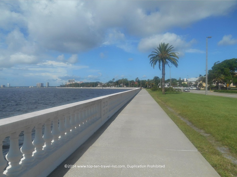 Palm tree and water views on the Bayshore Blvd. path in Tampa