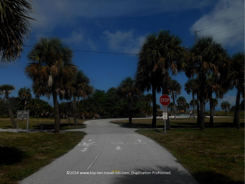 Palm trees lining the Fort De Soto Park recreation trail