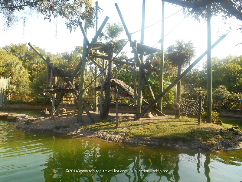 A view of Primate World at Tampa's Lowry Park Zoo