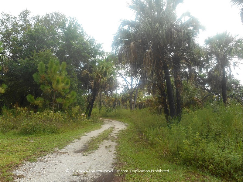 Sand Scrub Trail - Boyd Hill Nature Preserve in St. Petersburg, Florida