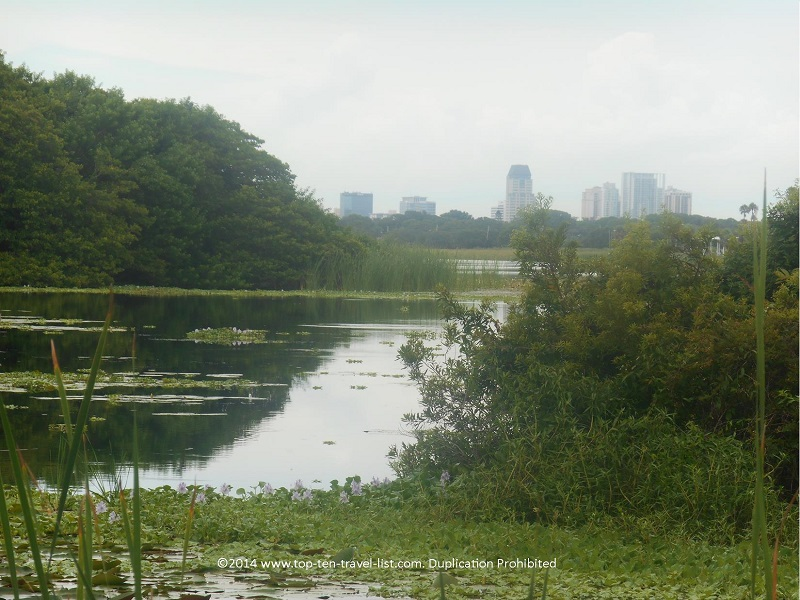 Skyline views at Boyd Hill Nature Preserve in St. Petersburg, Florida