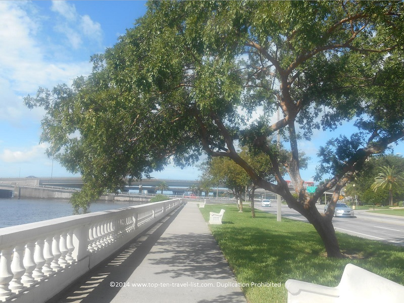 Trees and benches to relax on Tampa's Bayshore Blvd.