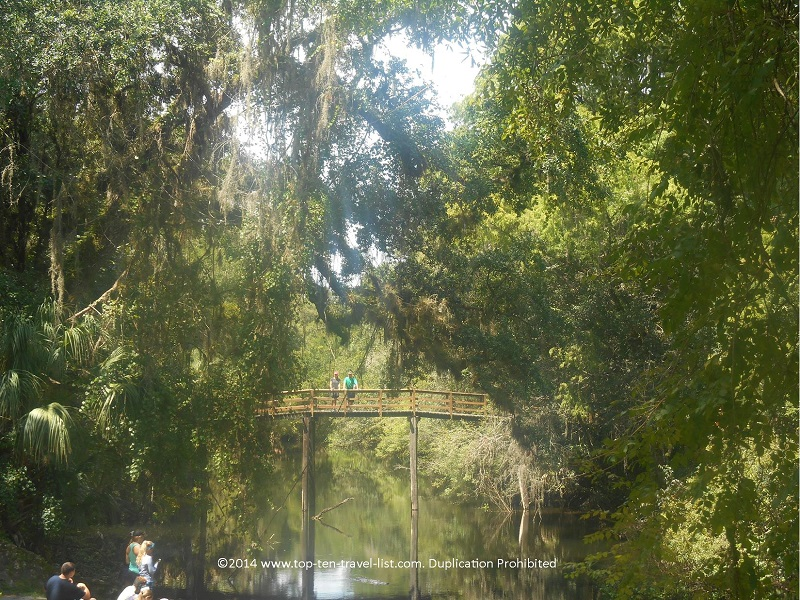 Pretty views of the suspension bridge at Hillsborough River State Park in Tampa, Florida