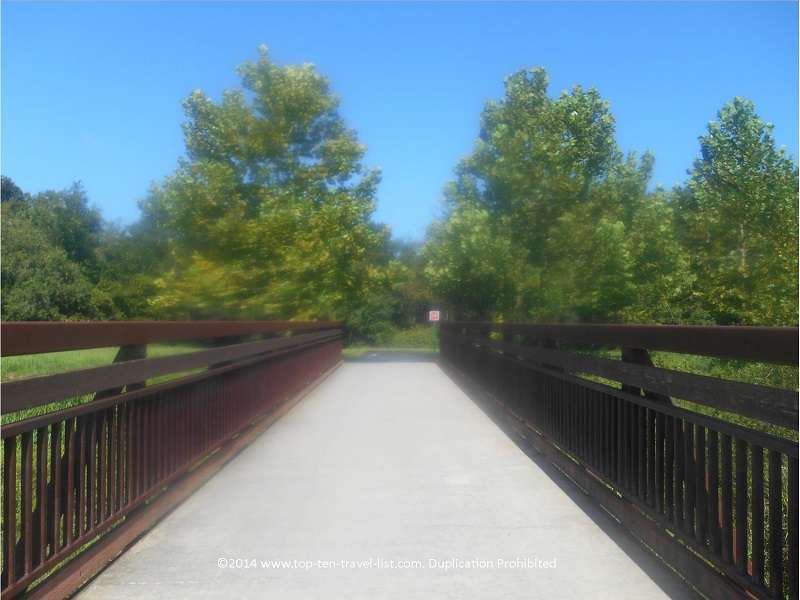 A scenic bridge along the Upper Tampa Bay Trail in Tampa, Florida