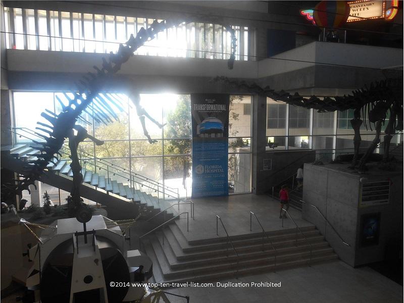 Sauropods at MOSI Tampa, Florida