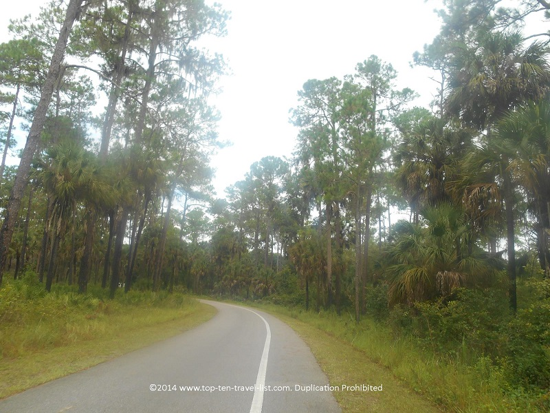Gorgeous views on the loop around Hillsborough River State Park - near Tampa, Florida