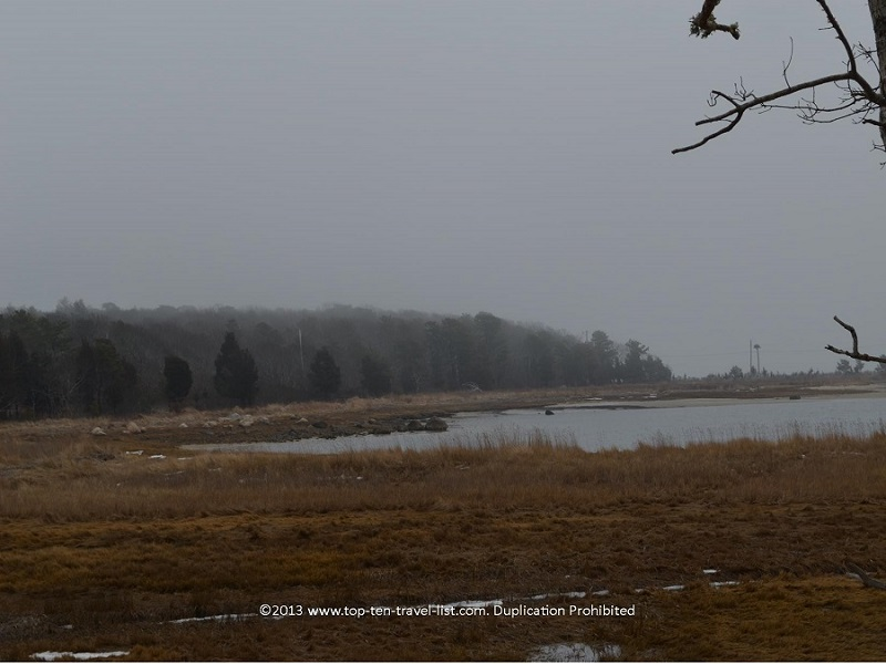 Marsh views at the Great Neck Wildlife Refuge in Wareham, Massachusetts