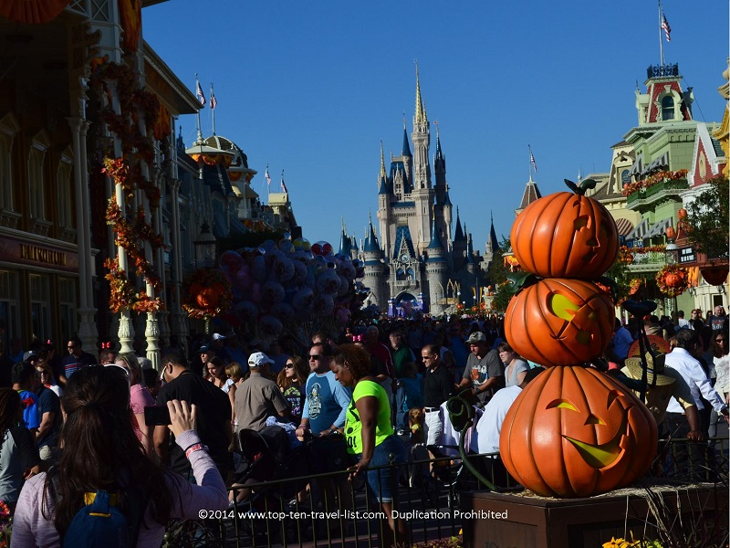Halloween pumpkin displays at Mickey's Not So Scary Halloween Party at the Magic Kingdom