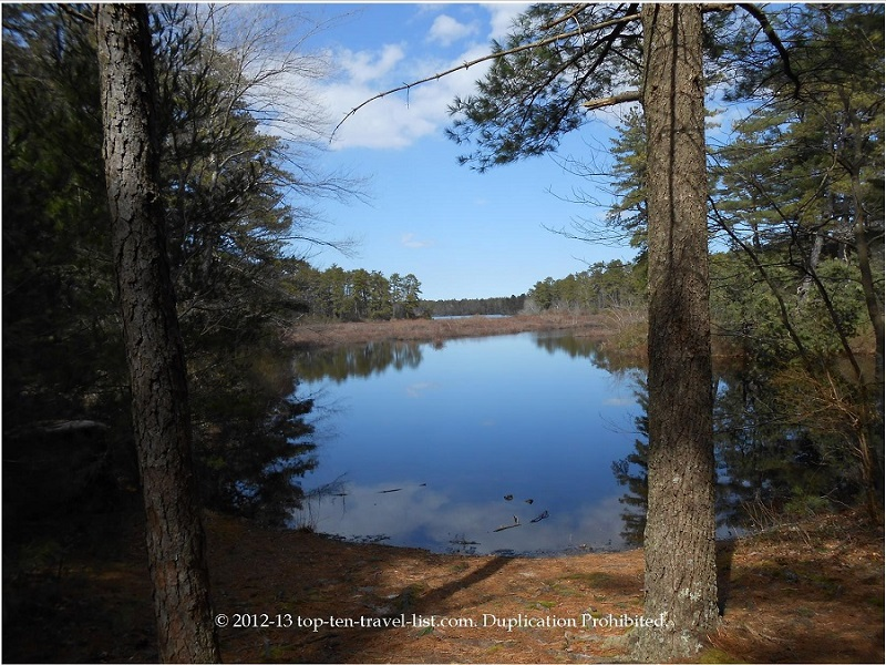 Beautiful water views at Myles Standish State Forest in Plymouth, Massachusetts