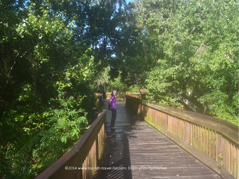 Boardwalk at Sawgrass Lake Park in St. Petersburg, Florida
