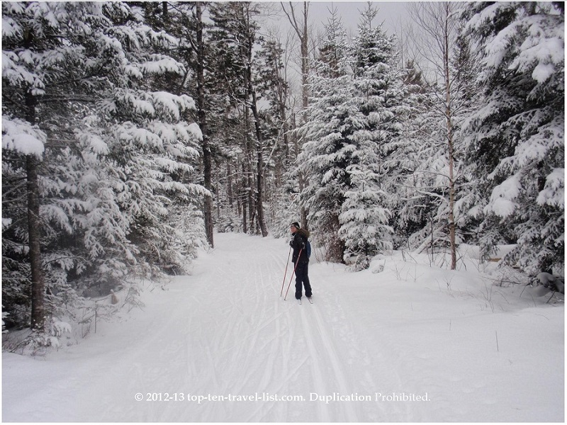 Cross country skiing at Bretton Woods Nordic Center in New Hampshire
