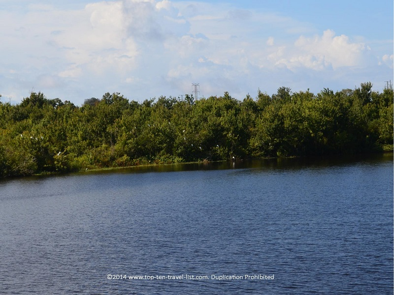 Pretty lake views at Sawgrass Lake Park in St. Petersburg, Florida