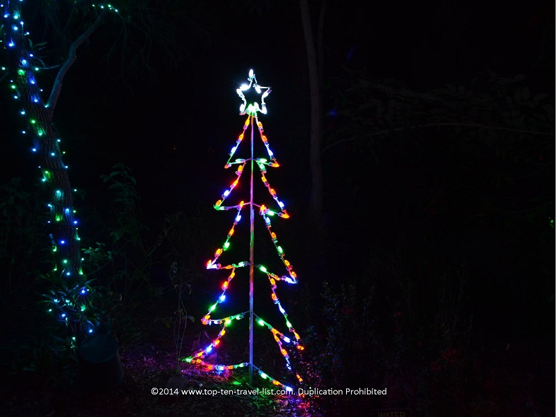Christmas tree light display - Florida Botanical Gardens - Holiday Lights 2014