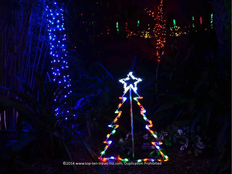 Lighted tree display - Florida Botanical Gardens - Holiday Lights 2014