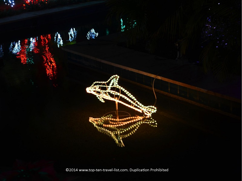 Dolphin display - Florida Botanical Gardens - Holiday Lights 2014