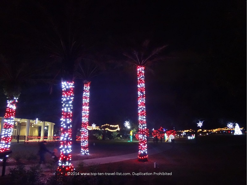 Largo Central Park Holiday Lights - candy cane palm trees