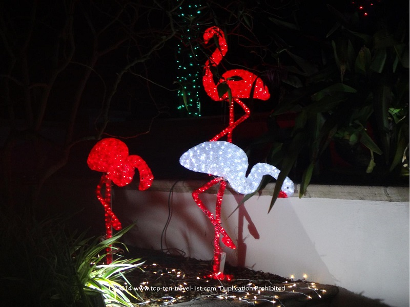 Flamingo display - Florida Botanical Gardens - Holiday Lights 2014