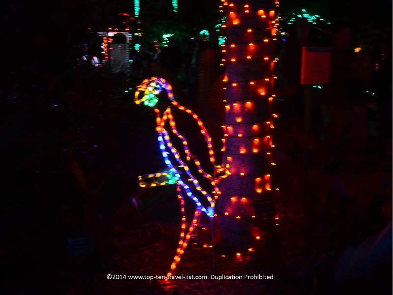 Parrot display - Florida Botanical Gardens - Holiday Lights 2014