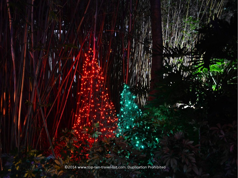 Pretty red and green Christmas lights at Florida Botanical Gardens - Holiday Lights 2014