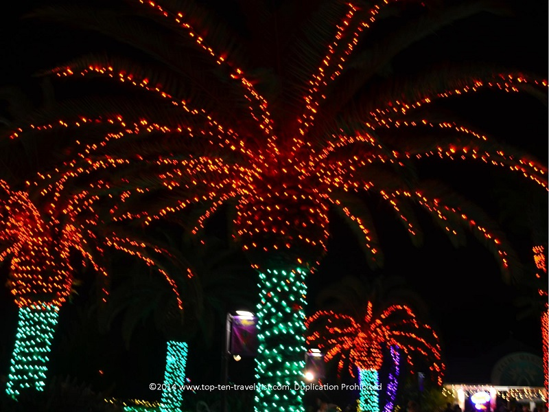 Christmas decorated palm trees - Florida Botanical Gardens - Holiday Lights 2014